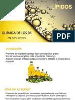 7. Lípidos-1
