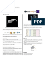 asteroides-posters-asteroid.pdf