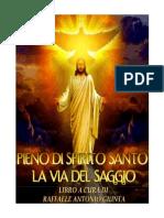 libro intero pieno di spirito santo la via del saggio