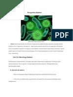 Pengertian Bakter1.docx