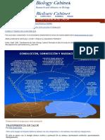 Transferencia del Calor.pdf