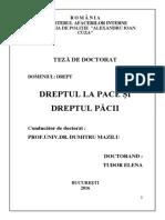 rezumat_teza_doctorat_tudorelena.pdf
