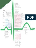 EKG MORPHOLOGY.pdf