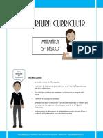 Cobertura Curricular Matematica 5basico 2012