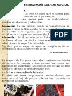 4 DESHIDRATACION DEL GN.pdf