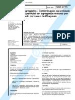 NBR 9775.pdf