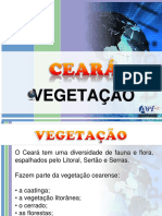 Vegeta Cao