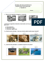 DIAGNOSTICO CIENCIAS NATURALES (2).doc