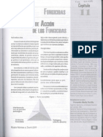 Fungicidas .pdf