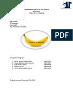 Cultivo de Banano