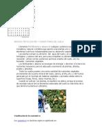 ABONOS y Fertilizante