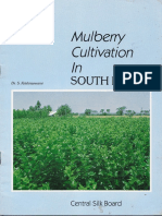 Mulbery cultivation in south India