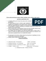 Cómo Cuidar Piercings en Septum, Lóbulo, Cartílago, Nariz, Ombligo, Cejas, Pezón, Genitales, Superficiales, Etc
