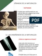 CAPITULO 12 EDUCACIÓN