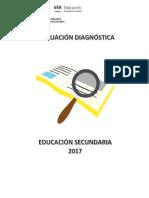EXAMEN DIAGNÓSTICO 2017