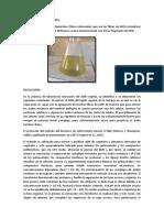 RESULTADOS Y DISCUCIONES.docx