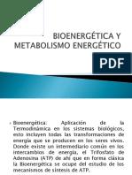 Bioenergética y Metabolismo Energético
