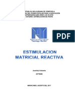estimulacion MATRICIAL REACTIVA.pdf