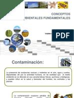 Semana 3_contaminacion y Desarrollo Sostenible