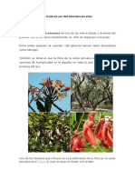 La Flora en Las Tres Regiones Del Peru