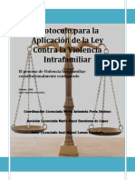 Protocolo Para La Aplicacion de La LCVI Oct 20091 Manuel Velasco (2)