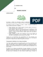GRASASYACEITES.pdf