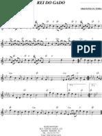 [superpartituras.com.br]-rei-do-gado.pdf