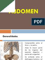 Clase+de+abdomen+fisioymorfologica (1)
