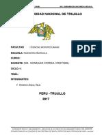 EXPEDIENTE-TECNICO-FINAL.docx