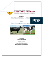 Ganado Lechero y Engorde en Perú