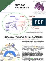 14_anaerobios_e_intraabdominales.pdf