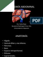 Anatomiadelabdomen 150701033627 Lva1 App6891
