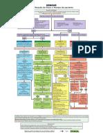 Classificação Risco.pdf