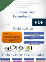 Ciclo Menstrual - Fecundacion