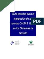 2007OHSAS.pdf