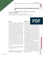 Priming the immune system of Penaeid shrimp by bacterial HSP70 (DnaK)