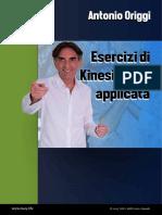 kinesiologia esercizi