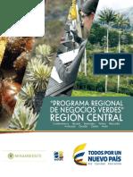 ProgramaRegionalNegociosVerdesCentral.pdf