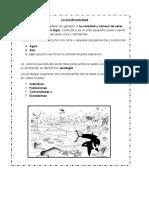 Material de Ciencias Biodiversidad y Adaptaciones
