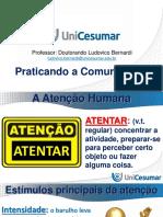 C_Slides_Tecnicas_de_Comunicacao_e_Oratoria.pdf