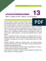 aparato respiratorio capitulo 13.pdf