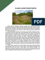 4-PENGELOLAAN-LAHAN-PASIR-PANTAI-Rajiman.pdf