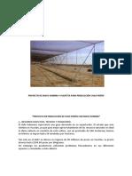 Proyecto de Maya Sombra y Plantita Para Producción Chile Perón