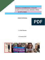 Opinion Experta Andre Solorzano Para Memorial Comision Interamericana Derechos Humanos 161 período