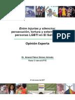 Opinión Experta Dr. Amaral Palevi Gómez- Caso Comision Interamericana Derechos Humanos 161 período