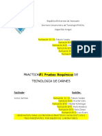 Practica# 1; Fabiola,Winifer,Paola,Keyla,Luis,Gleyber
