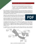 LA PESCA EN MÉXICO.docx