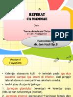 CA Payudara