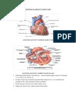 Hand Out Sistem Kardiovaskuler