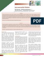 11_248Holoprosensefali Alobar.pdf